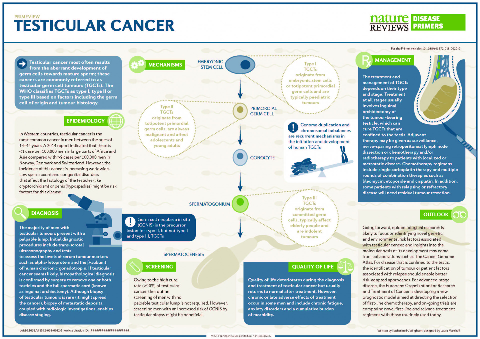 Poster Testicular Cancer (related to paper Cheng et al. Nat Rev Dis Primers 2018).